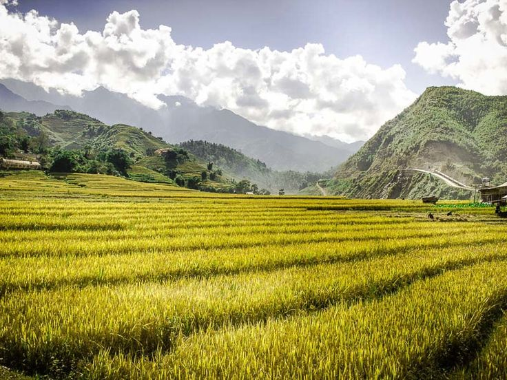 Vietnam Travel Guide - Sapa