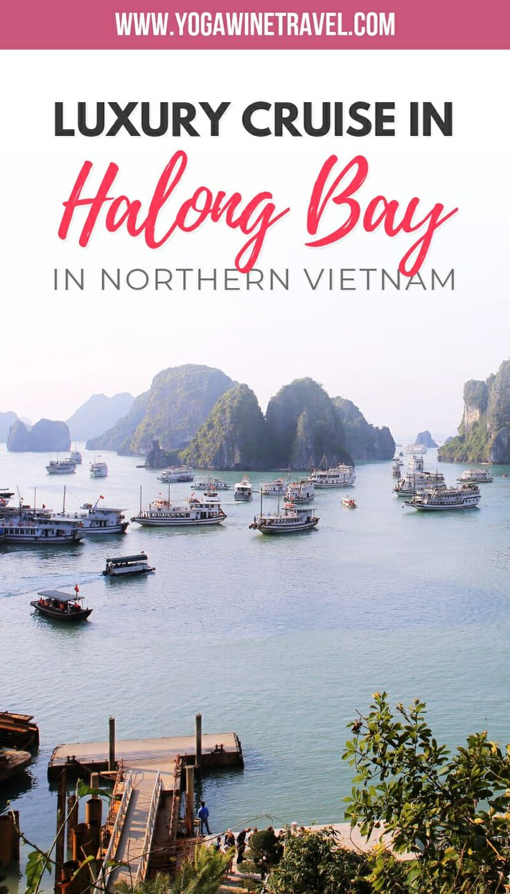Yogawinetravel.com: Experience Stunning Halong Bay in Style with Aphrodite Cruis...