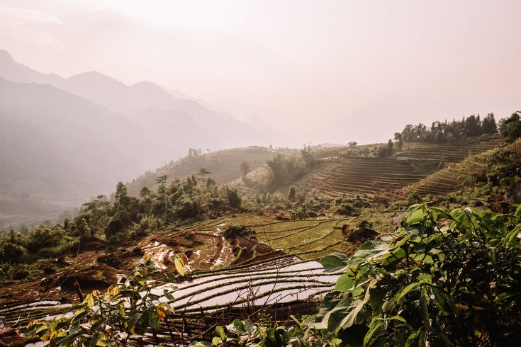 Sunset over the rice fields in Sapa Vietnam | Thinking about traveling to Vietna...